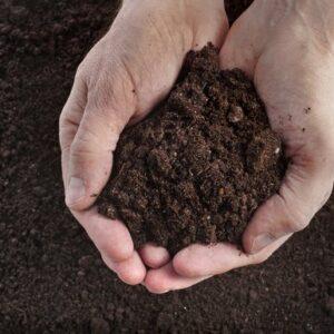 Restore Granular Soil Wetter