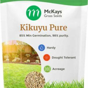 kikuyu pure grass seed