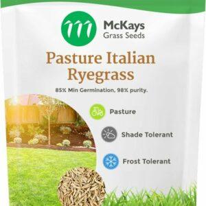 Pasture Italian Ryegrass Seed