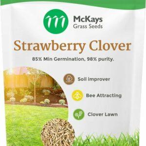 Strawberry Clover
